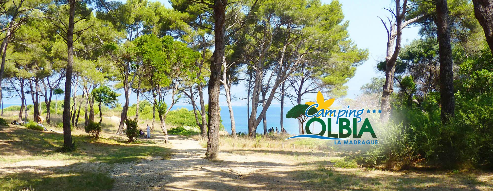 Le Camping Olbia vous propose des emplacements de camping dans un cadre naturel authentique et préservé, sur la Presqu'île de Giens. Calme garanti !